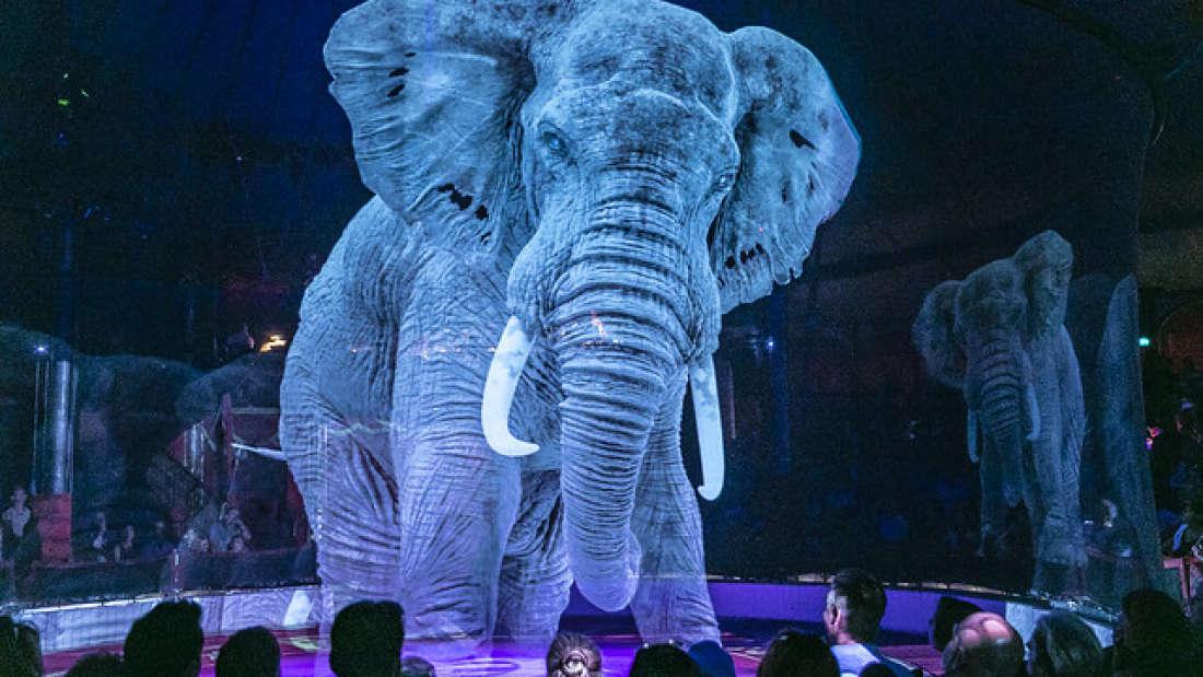 Circo alemán reemplaza a los animales vivos por hologramas