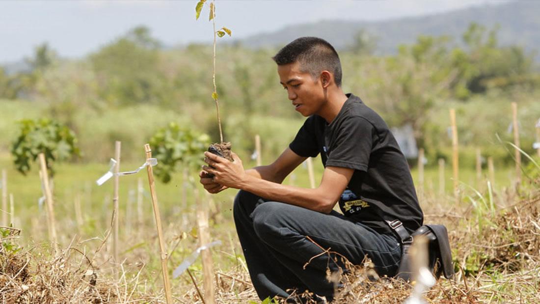 Estudiantes de Filipinas deben plantar 10 árboles si quieren graduarse, dicta proyecto de Ley