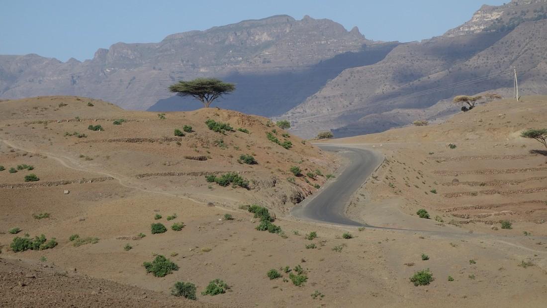 Etiopía plantará 4 mil millones de árboles