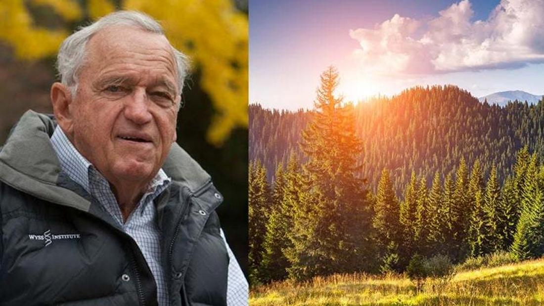 Este multimillonario quiere comprar el 15% del planeta para protegerlo