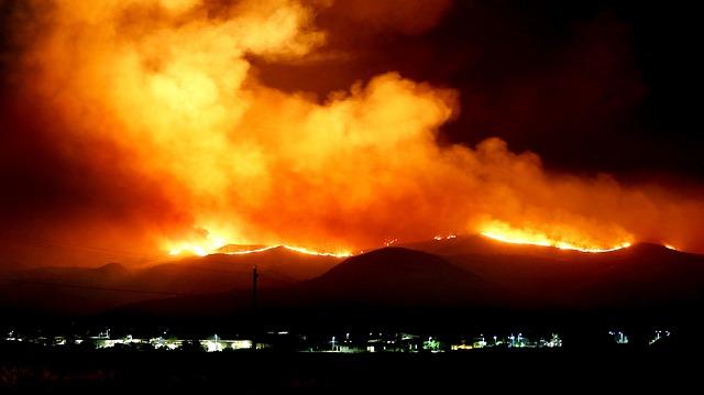 África también arde: el segundo pulmón verde está en llamas