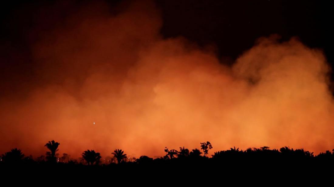 Incendios en la Amazonía: ¿qué está pasando y hay algo que podamos hacer?