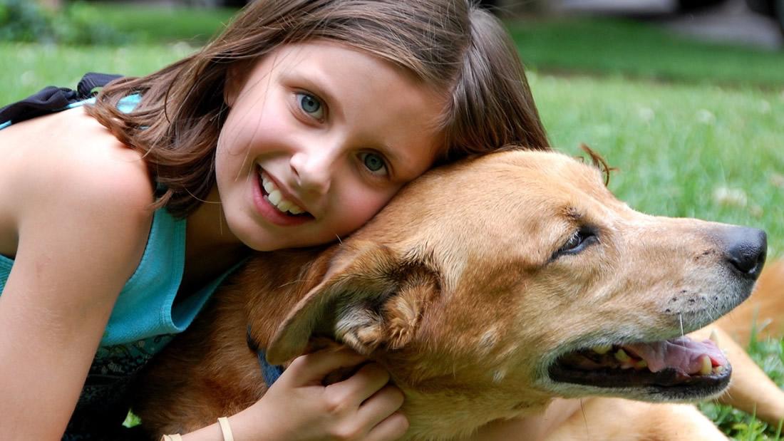 Colegio de Granada crea asignatura de Protección Animal