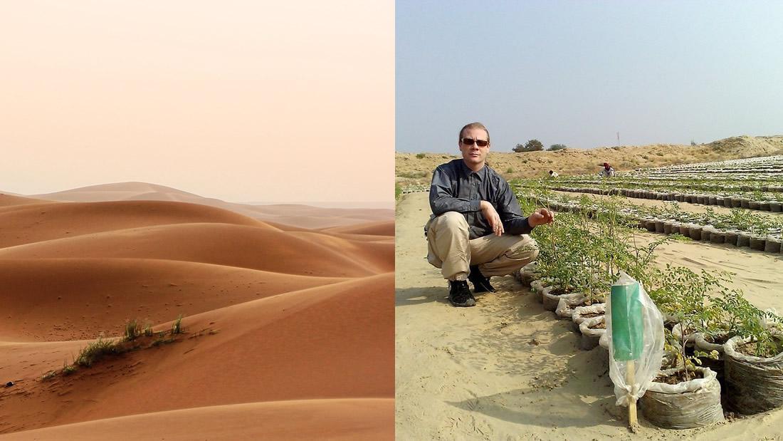 Este invento permite convertir desiertos en tierras de cultivo