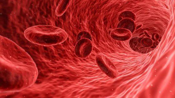 Científicos japoneses crean sangre artificial que podría administrarse a todos los tipos de sangre