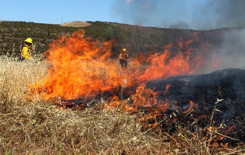 Ingeniero crea un gel rociable que extingue los incendios forestales