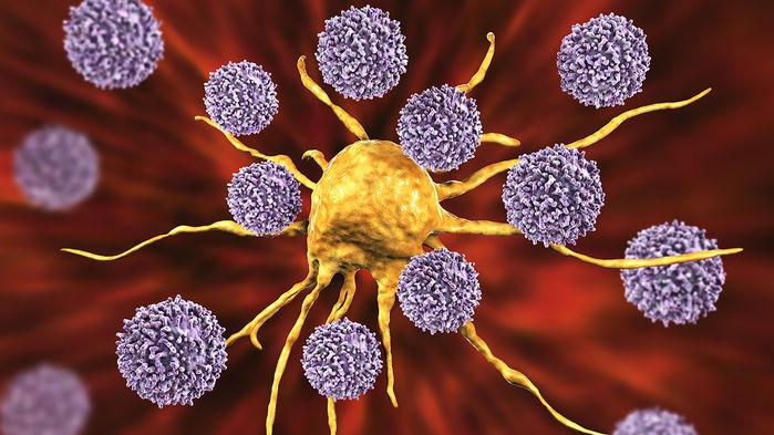 Las células T (púrpura) se abalanzan sobre una célula cancerosa (amarillo), un comportamiento estimulado por un nuevo medicamento