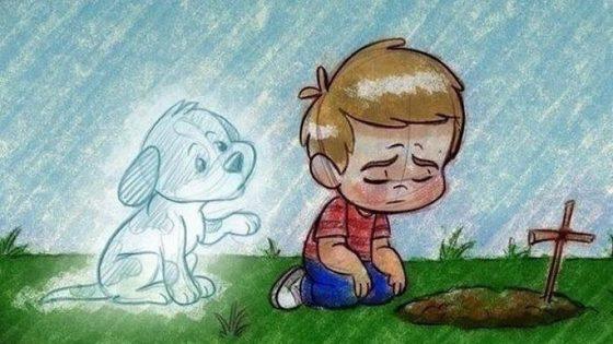 Perder una mascota es más doloroso de lo que la mayoría de la gente piensa