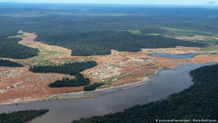La Amazonía está a punto de cruzar un umbral irreversible, según principales científicos