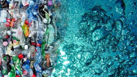 Descubren enzima que degrada las botellas de plástico en tiempo récord