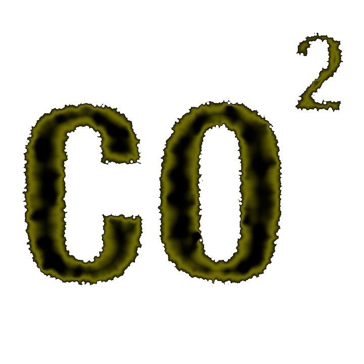 Aumento de los niveles de dióxido de carbono podría hacernos más tontos