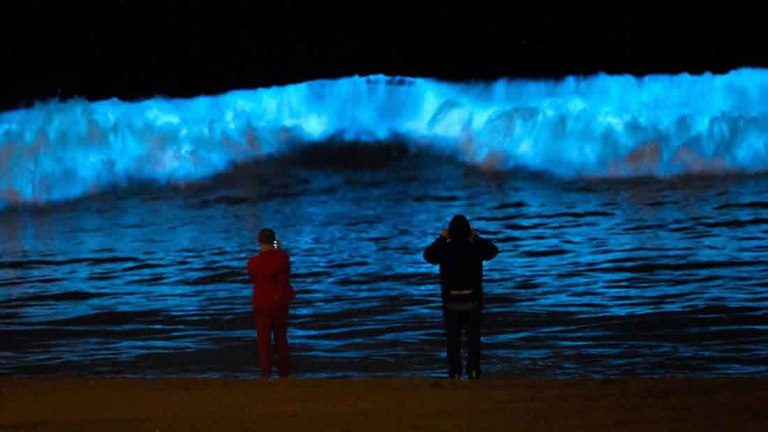 Olas bioluminiscentes atraen multitudes a las playas de California