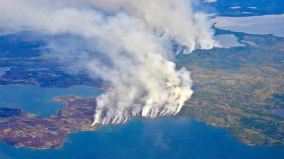 Incendios forestales en el Ártico: 5 razones por las que el mundo entero debería preocuparse