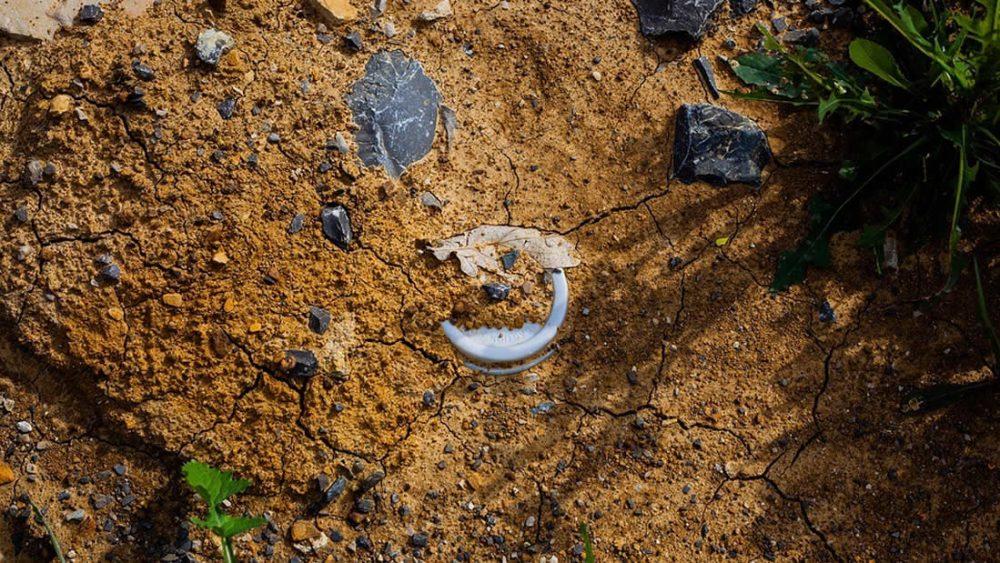 Microplásticos y nanopartículas están causando extinción de suelos