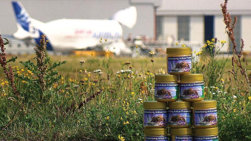 Miel de abeja Airbus